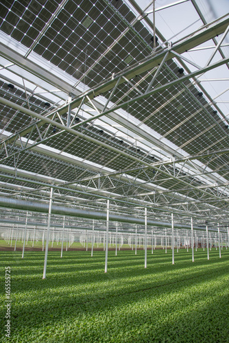 Gewachshaus Mit Photovoltaik Kaufen Sie Dieses Foto Und Finden Sie