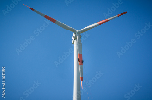 Inspection engineers abseiling from the rotor blade of a wind turbine in a North German wind farm on a clear day with blue sky Wallpaper Mural