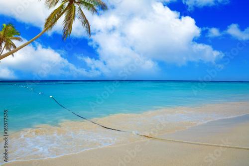 Montage in der Fensternische Karibik Caribbean sea and palms.