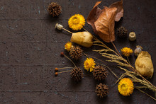 Autumn Composition Of Dried Fruits And Leaves