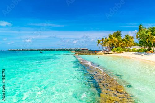 In de dag Groene koraal Beautiful tropical Maldives island with white sandy beach and sea .