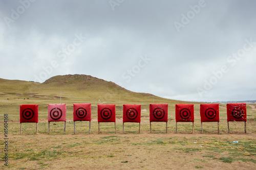 target in grassland