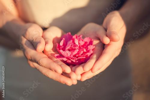 Fotografía  Couple holding flower, romantic date.