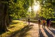 Leinwandbild Motiv Spaziergänger im Park in der Abendsonne