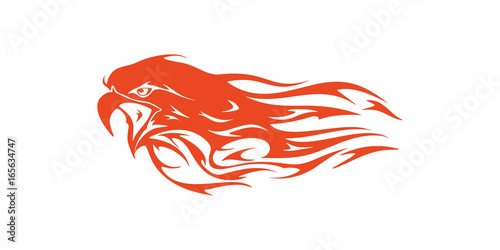 Eagle Head Flame Vector Template Design - Buy this stock