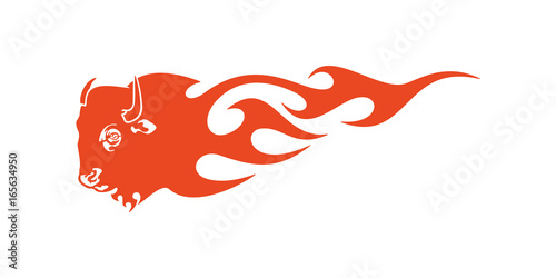 Photo  Bull Head Flame Vector Template Design