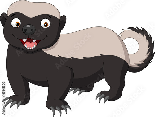 Tablou Canvas Cartoon honey badger