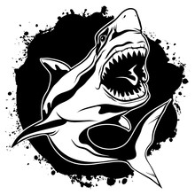 Graphic Drawing Ink Aggressive Shark With Open Mouth