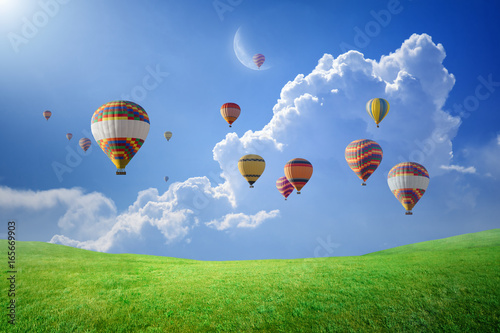 Poster Montgolfière / Dirigeable Hot air balloons flying in blue sky above green field