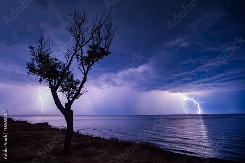 Zdjęcie XXL nocna burza na morzu, drzewo na plaży