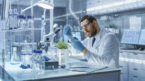 In a Modern Laboratory Research Scientist Conducts Experiments by Synthesising Compounds with use of Dropper and Plant in a Test Tube.