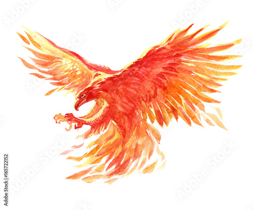 Watercolor single character mystical mythical character phoenix isolated on a wh Wallpaper Mural