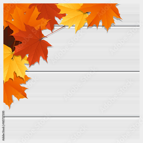 Hello autumn background with colorful leaves on wooden board , vector , illustration  Wall mural