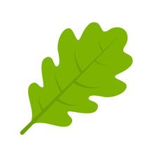 Green Oak Leaf Vector Illustra...