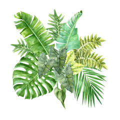 Obraz Watercolor tropical leaves