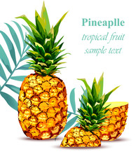 Pineapple Fruit Tropical Style Card. Vector Illustration