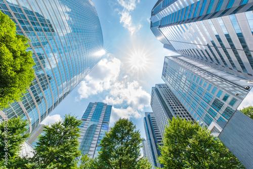 Fototapeta 品川の高層ビル obraz