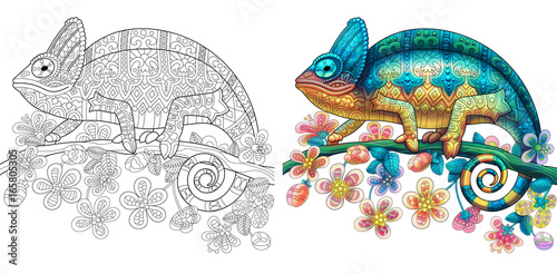 Coloring page of chameleon lizard. Colorless and color samples for book cover. Freehand sketch drawing for adult antistress colouring with doodle and zentangle elements.