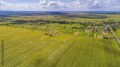 Staande foto Honing aerial view agriculture field summer day. Summer day landscape.