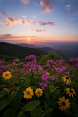 Obraz na SzkleWildflower sunset