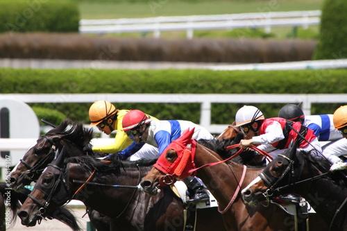 Fotografia Wyścig konny