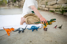 Boy Playing With Toy Dinosaurs...
