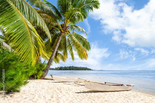 Obraz Urlop na plaży nad morzem z palmami i białą piaszczystą plażą - fototapety do salonu