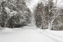 Snowy New England Country Road With Snow Squall