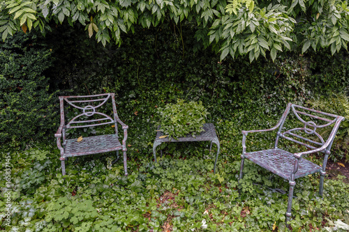 Two metal chairs and a table, amid an overgrown area of a garden