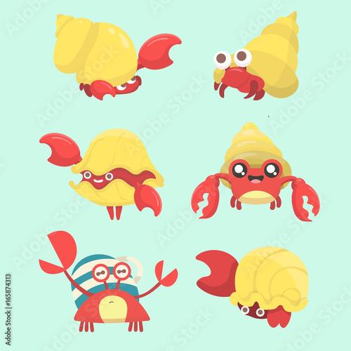 Fotografia, Obraz A set of hermit crab.