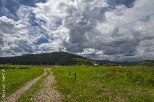 Tuinposter Donkergrijs Summer day landscape