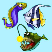 Set Of Anglerfish, Eel, Stripe...