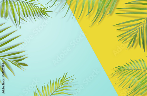 Tropical palm leaves on yellow and light blue background. Minimal nature. Summer Styled.  Flat lay.  Image is approximately 5500 x 3600 pixels in size