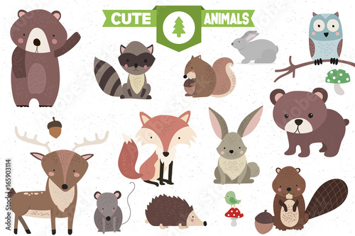 Fotografie, Obraz  Collection of Cute Forest Animals