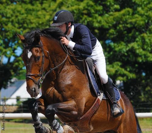 Spoed Foto op Canvas Paardrijden cavalier et cheval en compétition de sauts d'obstacles