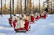 Reindeer sledding caravan safari and people forest Lapland Northern Finland