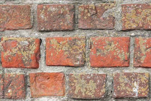 In de dag Stenen Старая кирпичная стена средневекового храма XVI века.