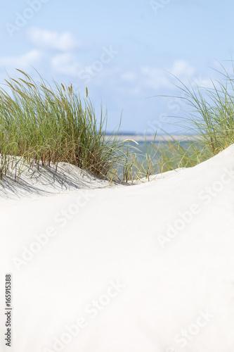 Fototapeten Nordsee Dünen in sonnigem Wetter auf Römö und Slyt