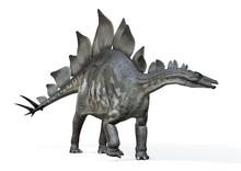 Stegosaurus Von Links, 3D-Rend...