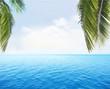 tropical palm water ocean horizon view
