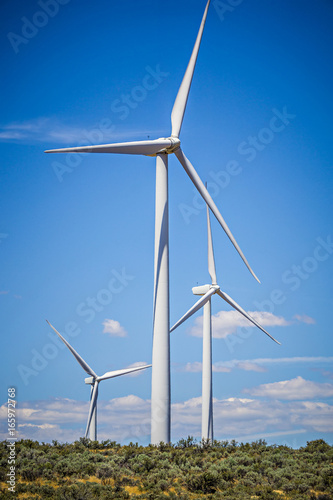 Fotografie, Obraz  wind turbines generating electricity on a windy sunny day