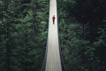 Solitude On Capilano Suspensio...