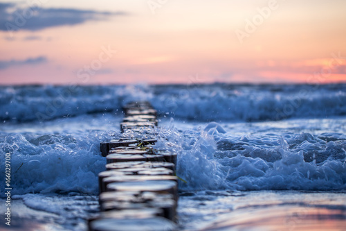 Canvas Prints North Sea Bune im Meer im Sonnenaufgang
