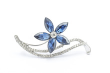 Silver Flower Brooch Isolated ...
