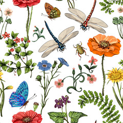 FototapetaSummer vector seamless pattern. Botanical wallpaper. Plants, insects, flowers in vintage style. Butterflies, dragonflies, beetles and plants in the style of Provence on a light background