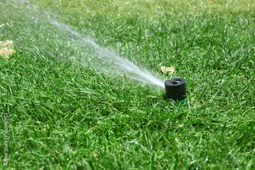 Irrigazione da giardino Canvas Print