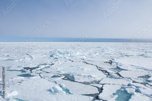 Obraz na plátne Arctic sea ice.