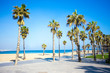summer background - promenade, beach and palms in Barcelona