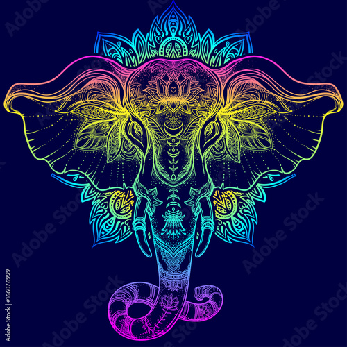 Fotografia  Beautiful hand-drawn tribal style elephant over mandala