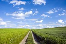 Field Road Dividing Fields